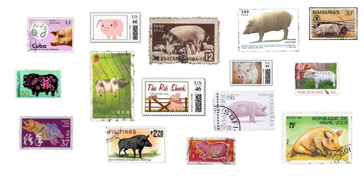 Francobolli del mondo, con una cosa in comune ... il maiale